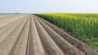Landbouwvrijstelling